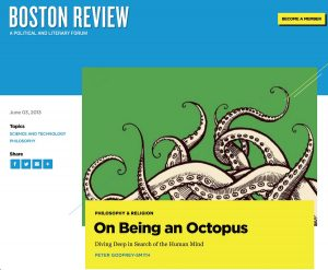 Boston Rev sst octos 2013